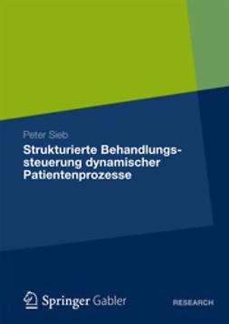 Sieb, Peter - Strukturierte Behandlungssteuerung dynamischer Patientenprozesse, e-bok