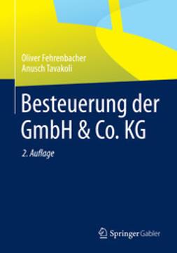 Fehrenbacher, Oliver - Besteuerung der GmbH & Co. KG, e-bok