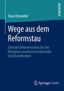 Enzweiler, Tasso - Wege aus dem Reformstau, ebook