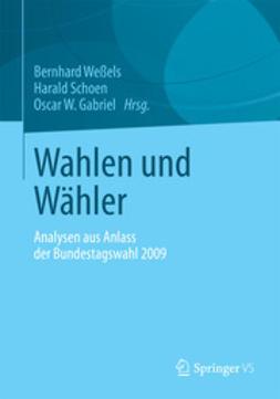 Weßels, Bernhard - Wahlen und Wähler, ebook