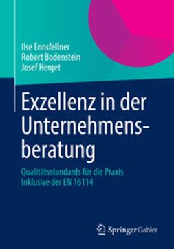 Ennsfellner, Ilse - Exzellenz in der Unternehmensberatung, ebook