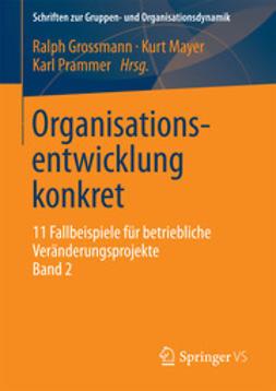Grossmann, Ralph - Organisationsentwicklung konkret, ebook