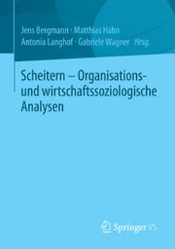 Bergmann, Jens - Scheitern - Organisations- und wirtschaftssoziologische Analysen, ebook