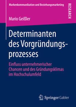 Geißler, Mario - Determinanten des Vorgründungsprozesses, e-bok