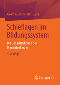 Auernheimer, Georg - Schieflagen im Bildungssystem, ebook