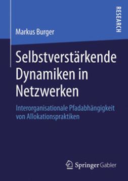 Burger, Markus - Selbstverstärkende Dynamiken in Netzwerken, ebook