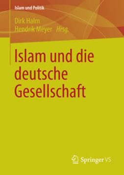 Halm, Dirk - Islam und die deutsche Gesellschaft, ebook