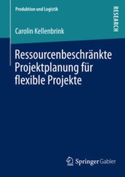 Kellenbrink, Carolin - Ressourcenbeschränkte Projektplanung für flexible Projekte, ebook