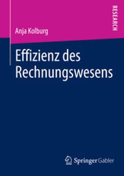 Kolburg, Anja - Effizienz des Rechnungswesens, ebook