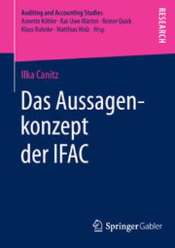 Canitz, Ilka - Das Aussagenkonzept der IFAC, ebook