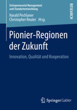 Pechlaner, Harald - Pionier-Regionen der Zukunft, ebook