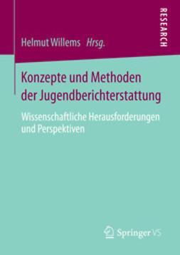Willems, Helmut - Konzepte und Methoden der Jugendberichterstattung, ebook