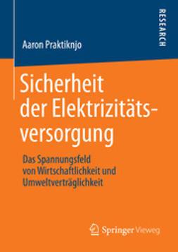 Praktiknjo, Aaron - Sicherheit der Elektrizitätsversorgung, ebook