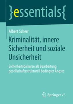 Scherr, Albert - Kriminalität, innere Sicherheit und soziale Unsicherheit, ebook