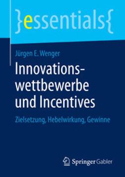 Wenger, Jürgen E. - Innovationswettbewerbe und Incentives, ebook