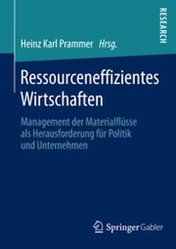 Prammer, Heinz Karl - Ressourceneffizientes Wirtschaften, ebook