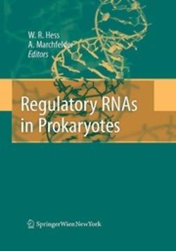 Hess, Wolfgang R. - Regulatory RNAs in Prokaryotes, ebook