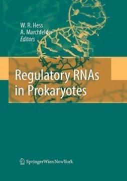 Regulatory RNAs in Prokaryotes
