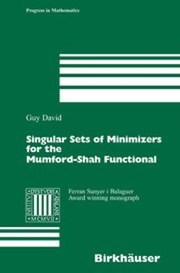 David, Guy - Singular Sets of Minimizers for the Mumford-Shah Functional, ebook