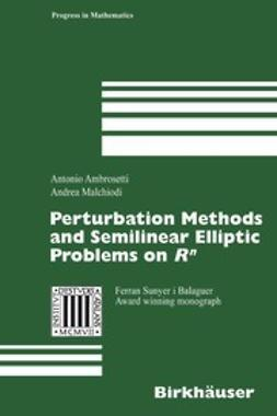 Ambrosetti, Antonio - Perturbation Methods and Semilinear Elliptic Problems on Rn, ebook