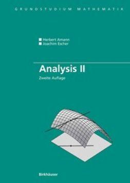 Amann, Herbert - Analysis II, ebook