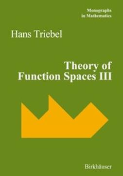 Triebel, Hans - Theory of Function Spaces III, e-kirja