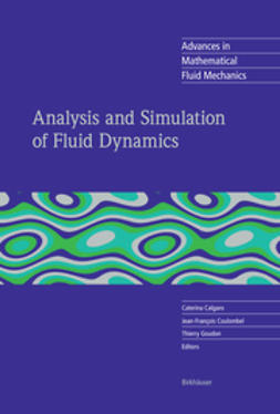 Calgaro, Caterina - Analysis and Simulation of Fluid Dynamics, e-kirja