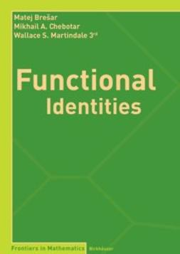 Brešar, Matej - Functional Identities, ebook
