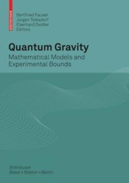 Fauser, Bertfried - Quantum Gravity, ebook