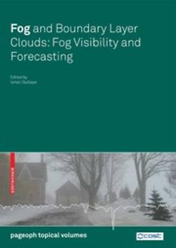 Gultepe, Ismail - Fog and Boundary Layer Clouds: Fog Visibility and Forecasting, ebook