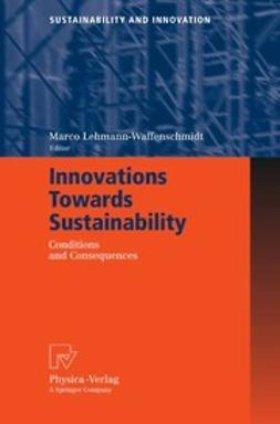 Lehmann-Waffenschmidt, Marco - Innovations Towards Sustainability, e-kirja