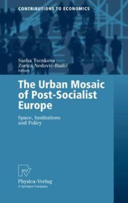 Nedović-Budić, Zorica - The Urban Mosaic of Post-Socialist Europe, ebook