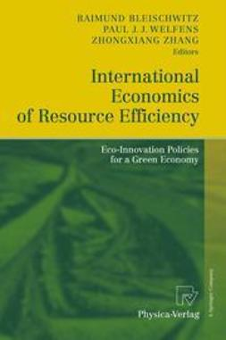 Bleischwitz, Raimund - International Economics of Resource Efficiency, ebook