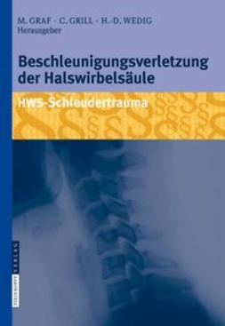 Graf, Michael - Beschleunigungsverletzung der Halswirbelsäule, ebook