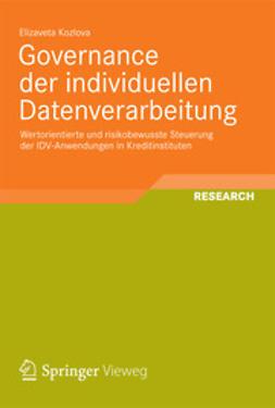 Kozlova, Elizaveta - Governance der individuellen Datenverarbeitung, ebook