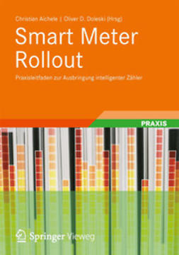 Aichele, Christian - Smart Meter Rollout, ebook