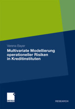 Bayer, Verena - Multivariate Modellierung operationeller Risiken in Kreditinstituten, ebook