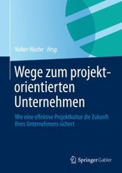 Hische, Volker - Wege zum projektorientierten Unternehmen, ebook