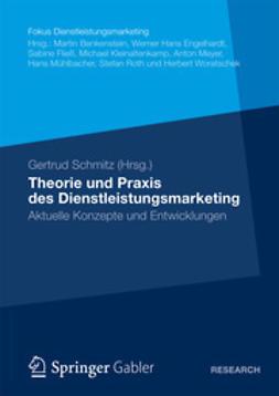 Schmitz, Gertrud - Theorie und Praxis des Dienstleistungsmarketing, e-bok