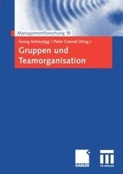 Schreyögg, Georg - Gruppen und Teamorganisation, ebook