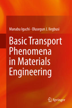 Iguchi, Manabu - Basic Transport Phenomena in Materials Engineering, e-bok