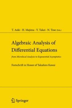 Aoki, Takashi - Algebraic Analysis of Differential Equations, ebook