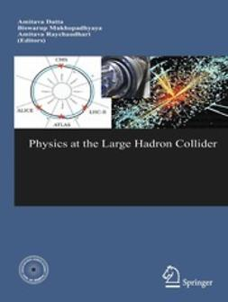Datta, Amitava - Physics at the Large Hadron Collider, ebook