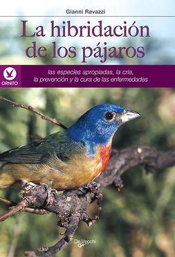 Ravazzi, Gianni - La hibridación de los pájaros, e-kirja