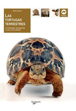 Avanzi, Marta - Las tortugas terrestres, e-kirja