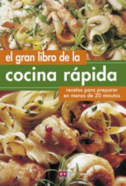 Sala, Paola - El gran libro de la cocina rápida, ebook