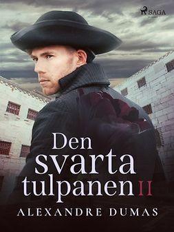 Dumas, Alexandre - Den svarta tulpanen II, e-bok