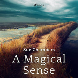 Chambers, Sue - A Magical Sense, äänikirja