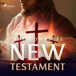 Glyn, Christopher - The Complete New Testament, audiobook