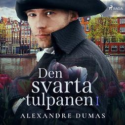 Dumas, Alexandre - Den svarta tulpanen I, audiobook